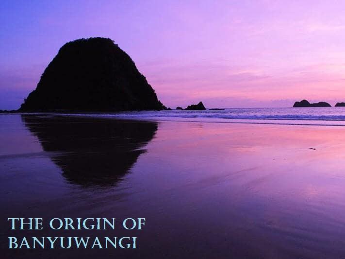 The Origin of Banyuwangi